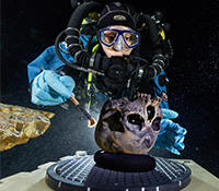 Diver Susan Bird working at the bottom of Hoyo Negro, a large dome-shaped underwater cave on Mexicoï