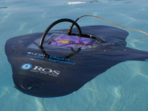 The Stingray is equipped with forward- and down-looking cameras,  a high-intensity  lighting apparatus, a piezoelectric-film based sonar system, inertial navigational sensors and custom-designed software.
